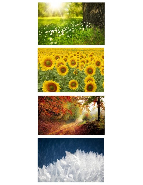 Nature and its colors